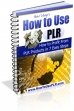 How To Use PLR