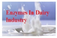 Enzymes In Dairy Industry
